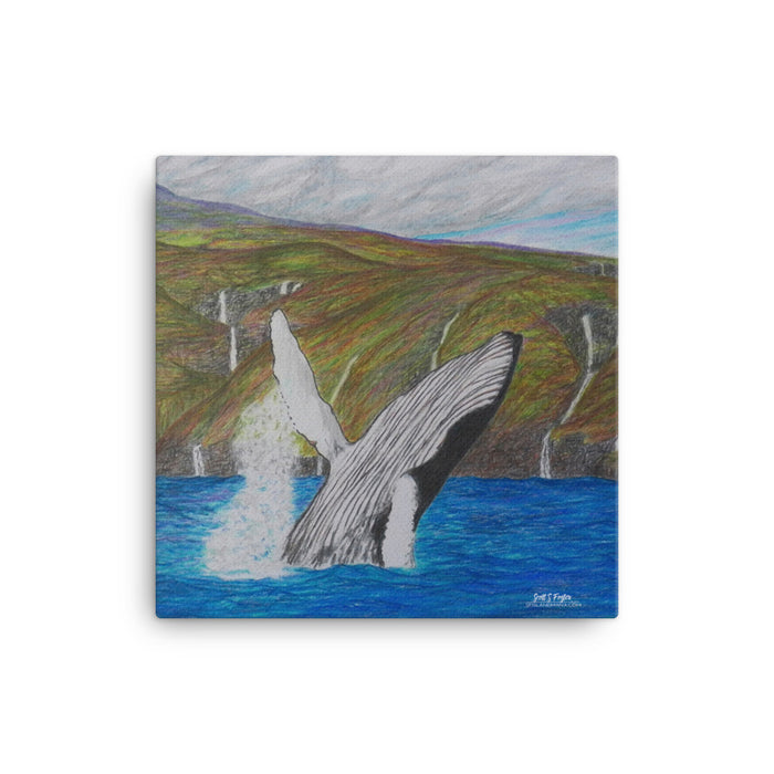 Hawaiian Humpback off the Kohala Valley's- Giclée Art Canvas Print- Size: 12x12, 12x16, and 12x16 wrap - Shella Island Products,, Canvas Prints - Yoga Leggings, Shella Island Products - Asana Hawaii