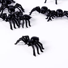 50 SPIDERS