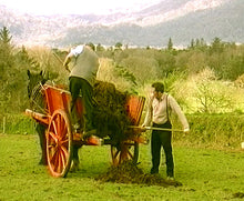 "Irish Traditional Farming ""Preserving the Past"" at Muckross Farms Co. Kerry"