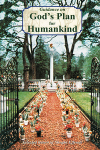 Guidance on God's Plan for Humankind