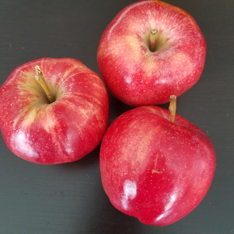 Apples for gentle fall facial DIY beauty