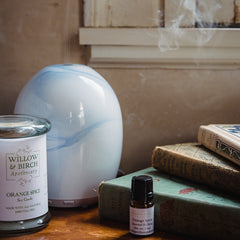 Aromatherapy diffuser with essential oils and scented candle by Willow & Birch Apothecary, with antique books