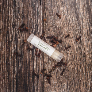Chai Spice naturally flavored moisturizing lip balm from Willow & Birch Apothecary