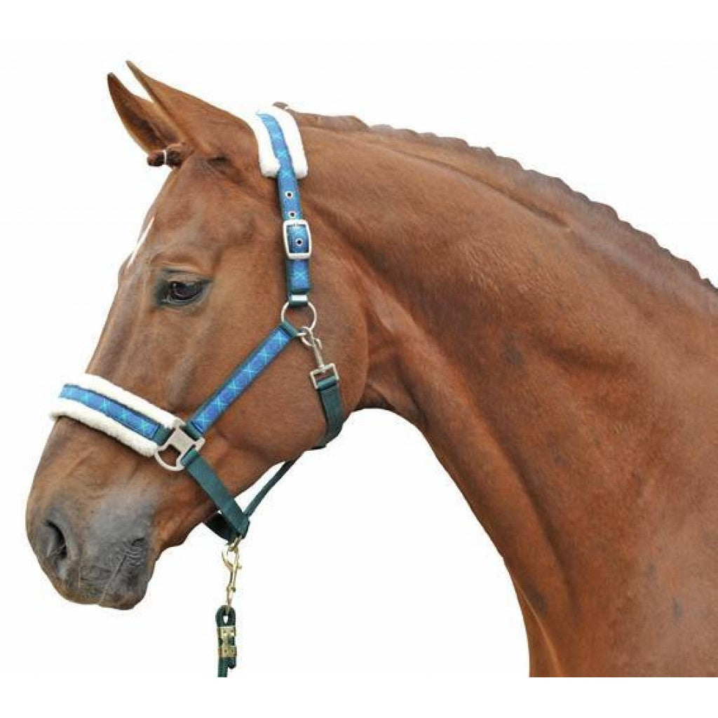 Head collar -Vivien- with plush padding