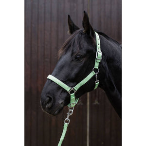 Head collar -Stars Softice- with soft padding