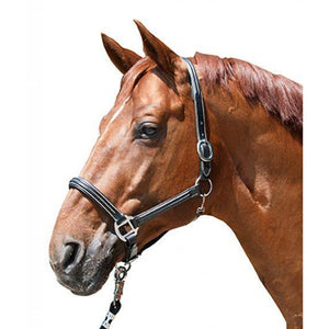 Leather head collar -Veronika-