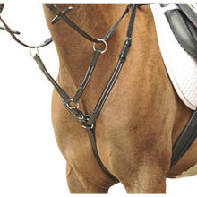 Breastplate/martingale silver fittings