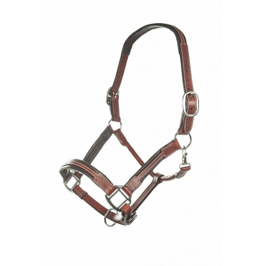 Leather head collar -Soft-