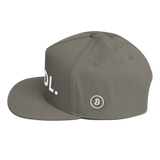 Bitcoin Bitcoin Hodl Hat Grey