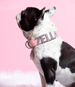 CUSTOM COLLAR *PETS NAME/NICK NAME/WORD*