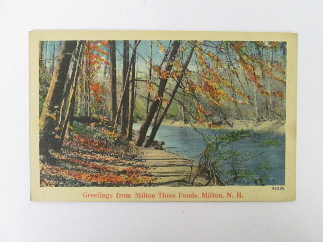 Vintage Post Card Greetings from Milton Three Ponds Milton NH