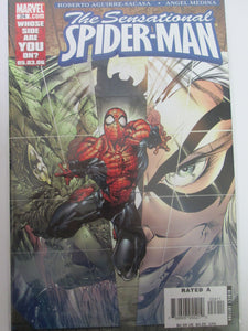 Sensational Spider-Man # 24 (Marvel)