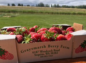 U-Pick opens 6/8/18 for strawberries!!