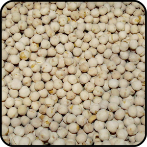 Chick Peas  - White Roasted