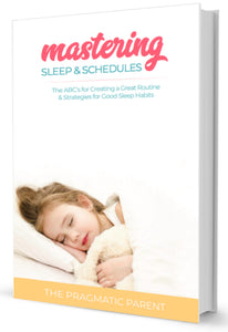 Mastering Routines & Schedules eBook