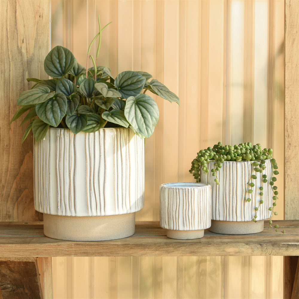 Vertical Stripe Cachepot, Assorted Sizes