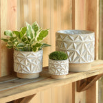 Geometric Cachepot, Assorted Sizes