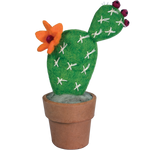Fair Trade Small Prickly Pear