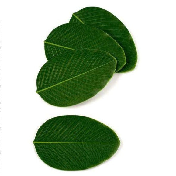Leaf Coaster, Set of 4