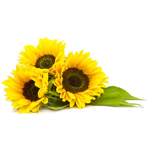 Ingredients- Sunflower Oil