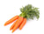 carrot seed oil ingredient natural