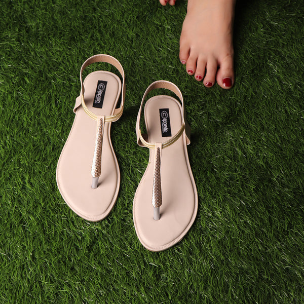 The Sweet Corn Flats in Cream