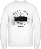 Krypta s datem - pánská mikina BC men sweatshirt - Forces.Design