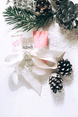 caudalie christmas set, stocking filler ideas, stocking filler, christmas gift, french pharmacy, french skincare