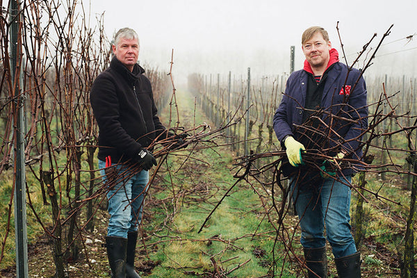 Pruning in an <br>English Vineyard