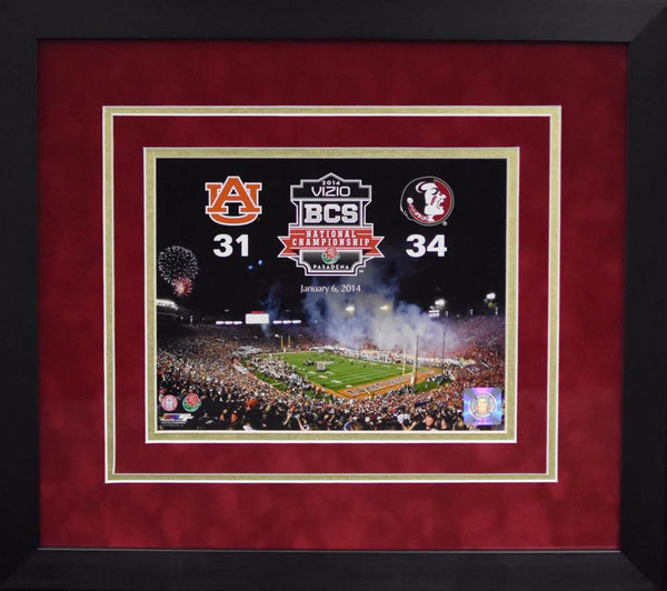 Florida State Seminoles 2014 BCS National Championship 8x10 Framed Photograph