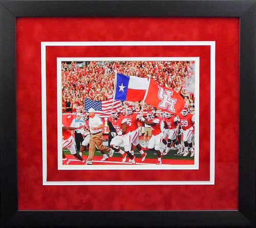 Houston Cougars Flags 8x10 Framed Photograph