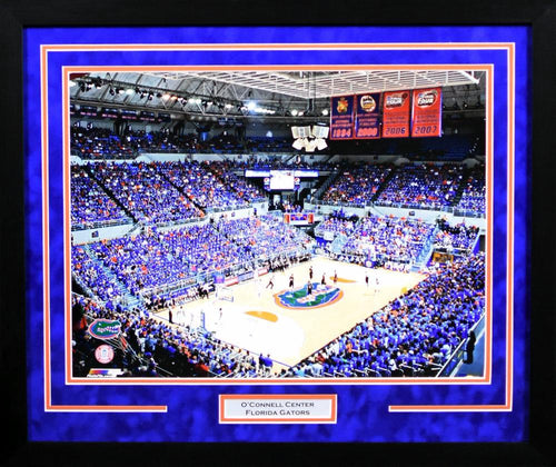 Florida Gators O'Connell Center 16x20 Framed Photograph
