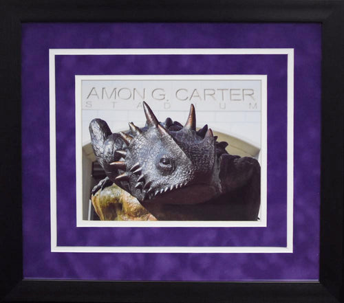TCU Horned Frogs Statue 8x10 Framed Photograph