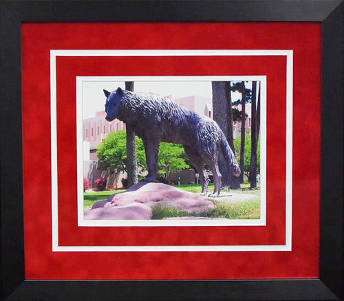 New Mexico Lobos Statue 8x10 Framed Photograph