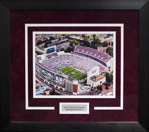 Mississippi State Bulldogs Davis Wade Stadium 8x10 Framed Photograph