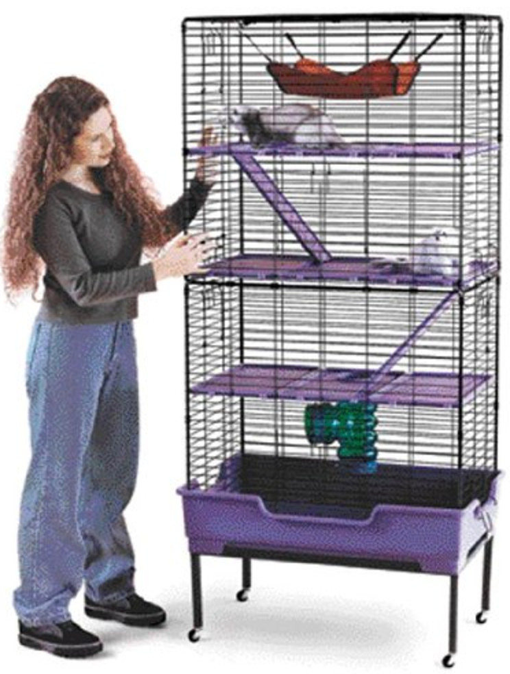 Ferret Cage Tower