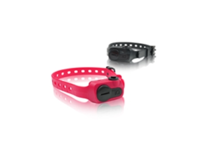 Dogtra iQ No Bark Dog Training Collar