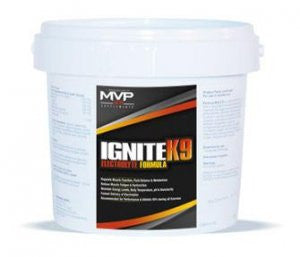 IgniteK9 Electrolyte Formula (90 tablet bottle)
