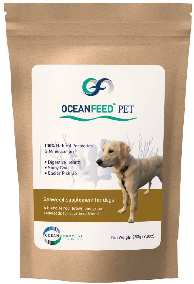 OceanFeed Pet - Seaweed Food Supplement for Dogs