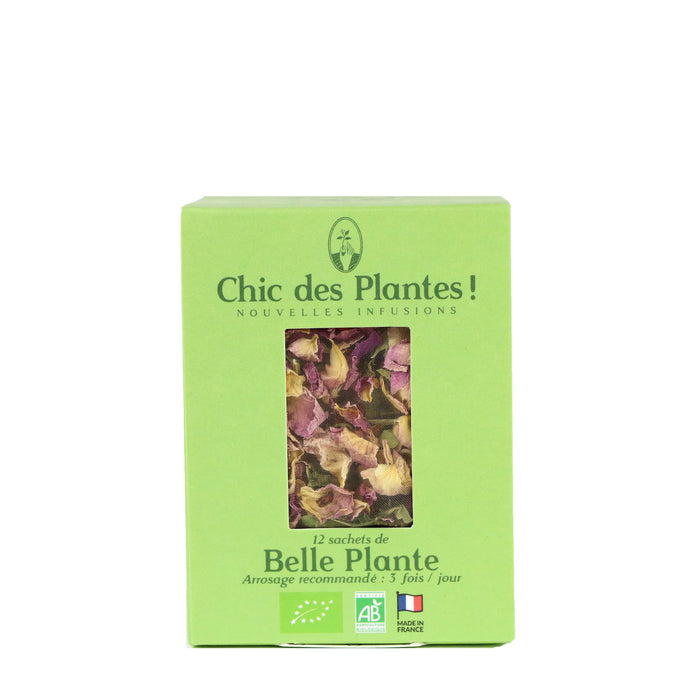 BELLE PLANT Organic Infusion (Box: 12s)