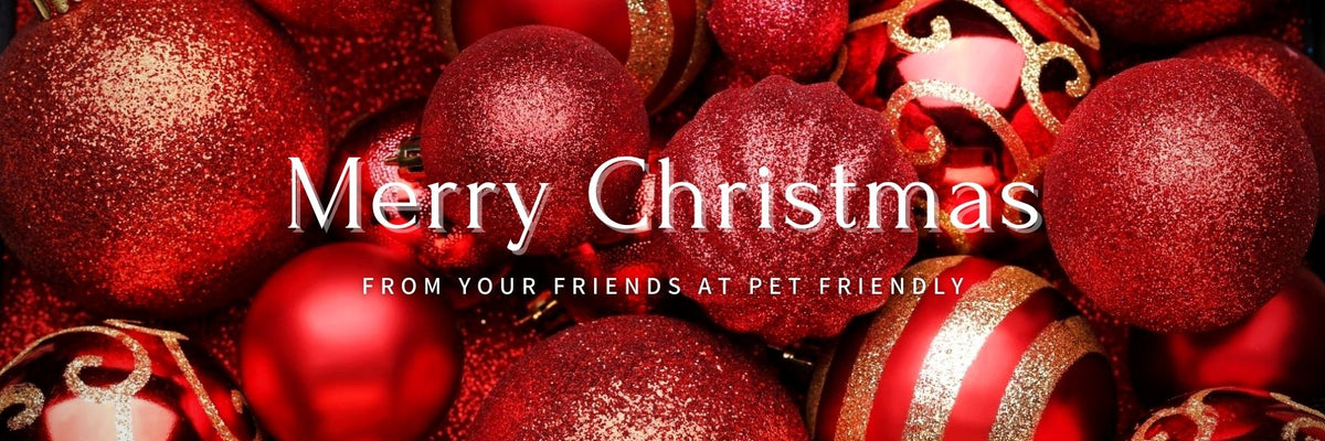 Merry Christmas From Your Friends At Pet Friendly