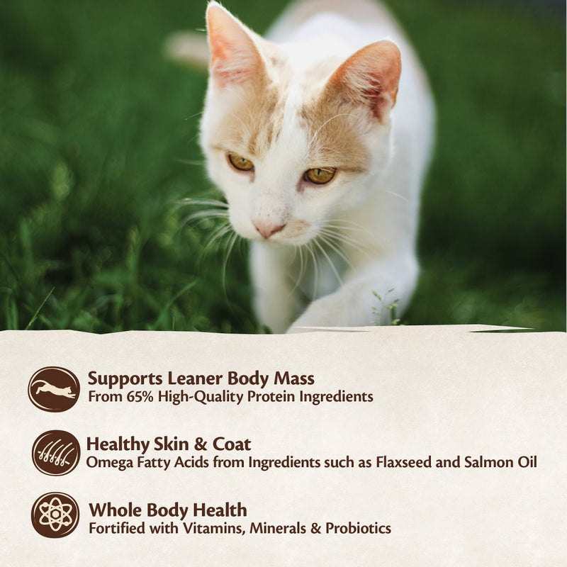 Wellness CORE Natural Grain Free Original Turkey, Chicken, Whitefish & Herring Recipe Dry Cat Food