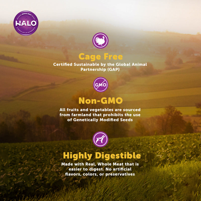 Halo Small Breed Holistic Grain Free Game Bird Medley Dry Dog Food