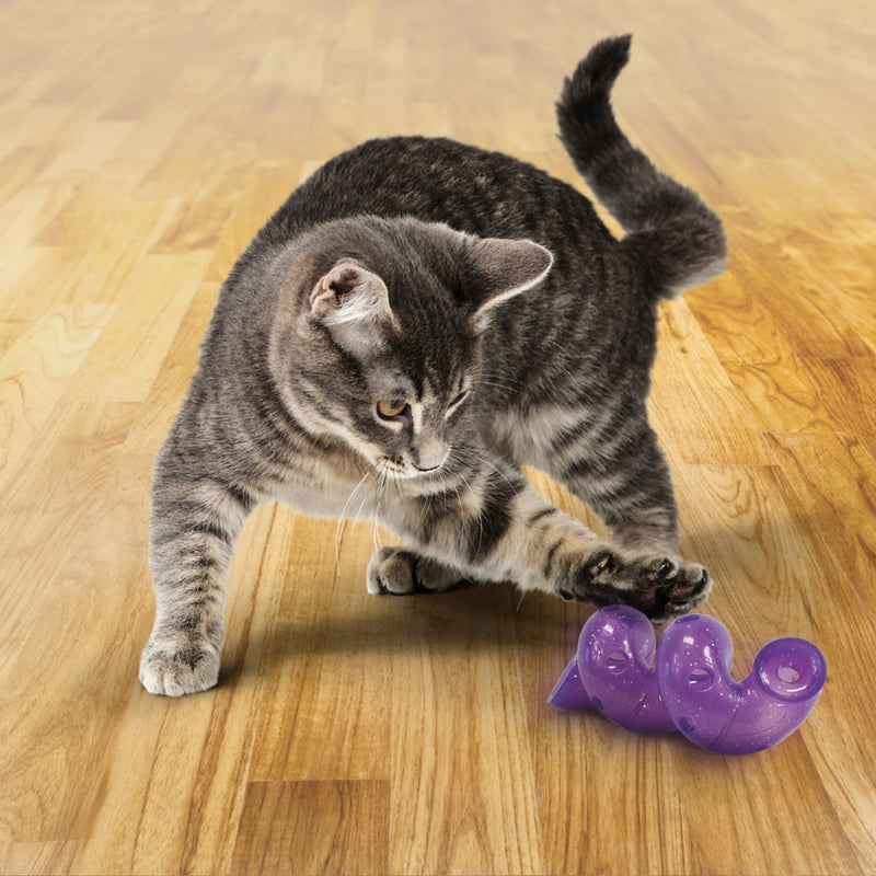 KONG Bat-A-Bout Spiral Cat Toy
