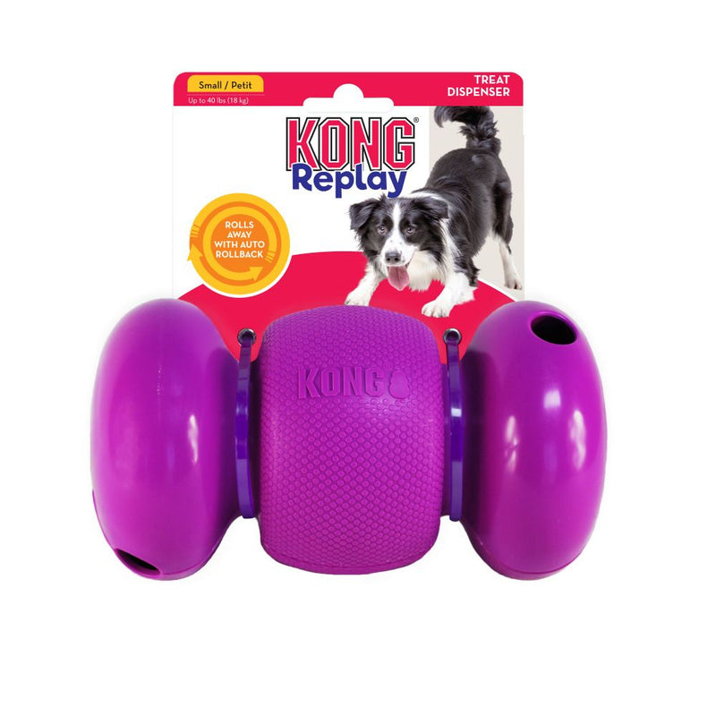 KONG RePlay Dog Toy