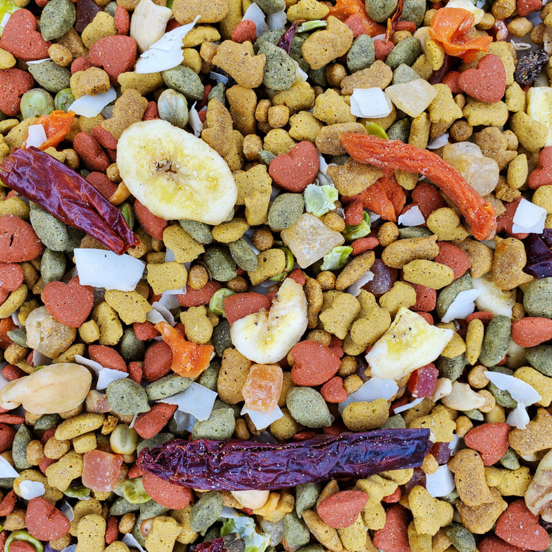 Higgins inTune Harmony Parrot Food