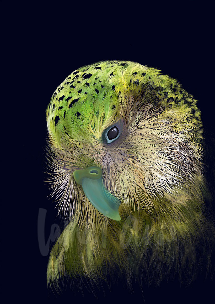 Tui Limited Edition Art Print