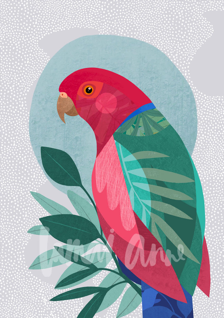 Male King Parrot Fine Art Print