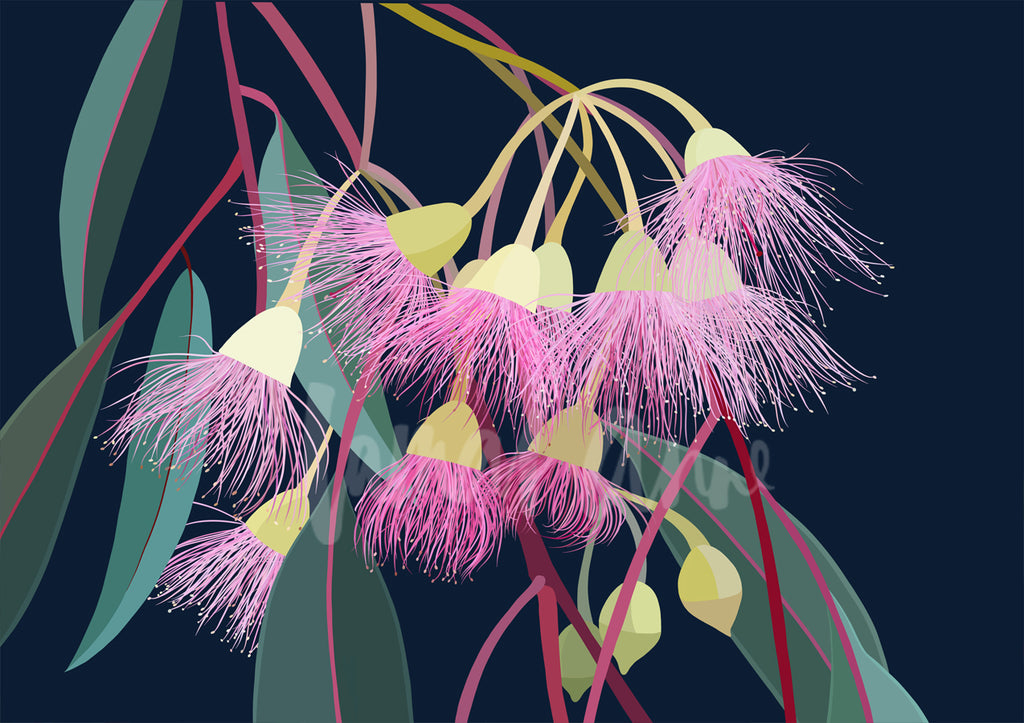 Landscape Flowering Gum Limited Edition Print