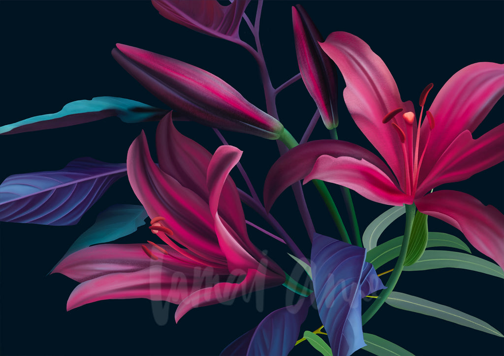 Lillies Fine Art Print